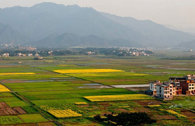 户口迁出农村后,如果土地被征用还能领取补贴吗?