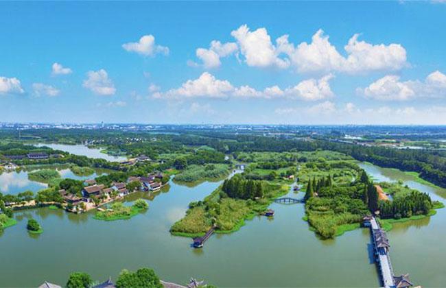 重庆200多个生态保护修复试点项目见成效