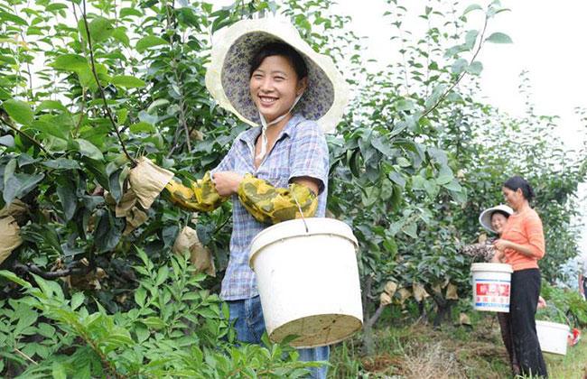 今年农村贫困户可以领这几项补贴,涉及生活很多方面,赶紧来看看