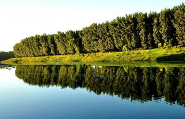 明年河南省20个省级湿地公园开建