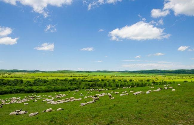 """辽宁省有6个村被命名为""""全国生态文化村"""""""