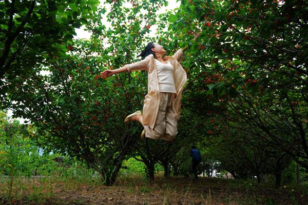 樱桃苗怎么种植?大樱桃树苗种植栽培技术