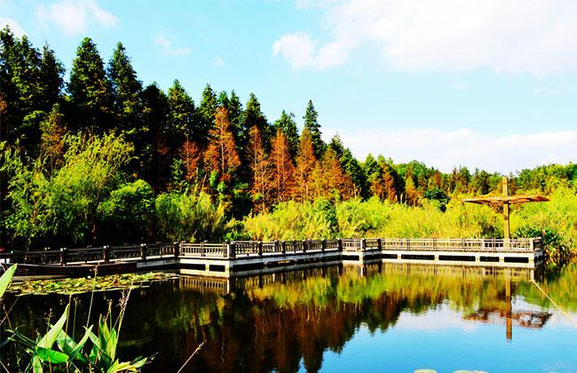 福建新增两处国家湿地公园