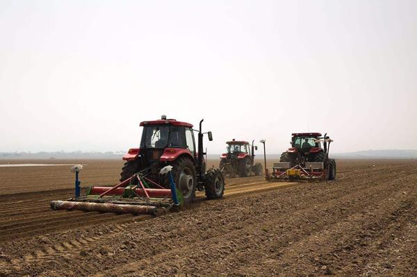 2020年农业补贴新政策,5类人成补贴重点,一年能拿不少钱!