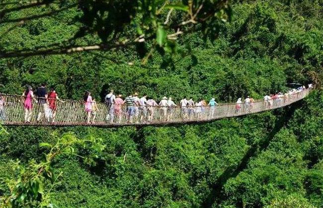 中国森林旅游2019十件大事
