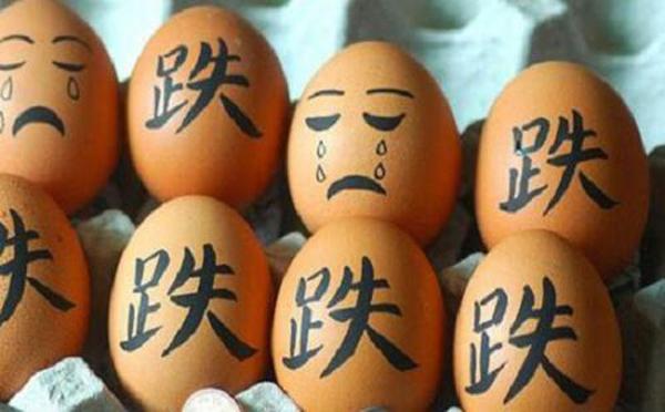 鸡蛋价格下跌的原因?疫情过后蛋价是否会反弹?