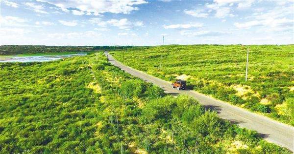 毛乌素沙漠即将从陕西版图消失,毛乌素沙漠的前世今生