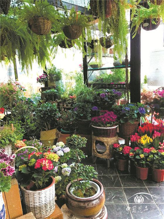 疫情对中国花卉零售业影响分析报告发布
