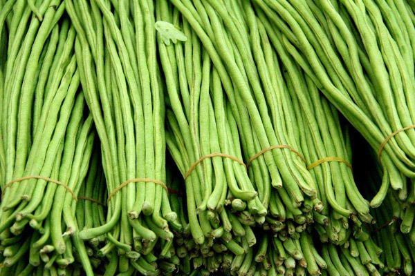 豇豆有哪些价值?豇豆种植有前景