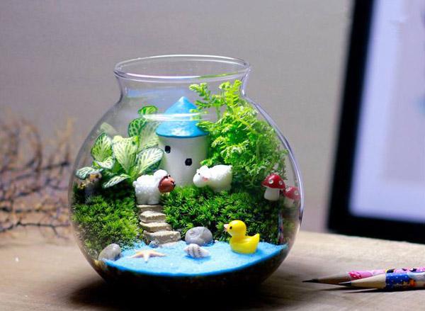 微景观生态瓶能活多久?微景观生态瓶介绍