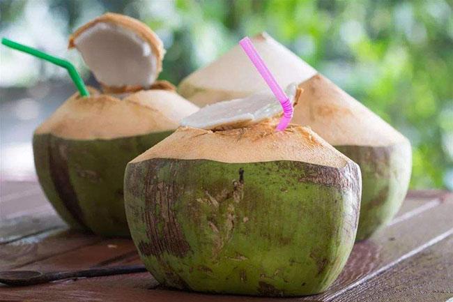 2020年椰子的市场行情如何?