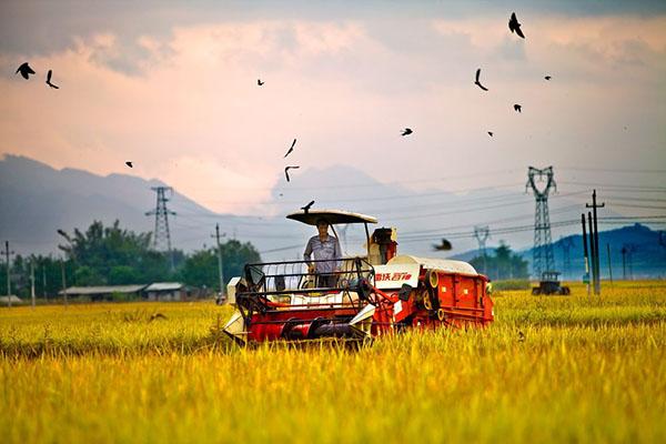 农村这3项补贴马上截止,农民抓紧领取!