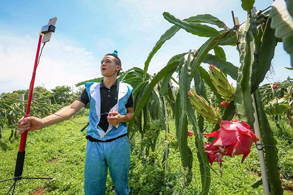农村有3大新兴职业,做起来简单赚钱快!