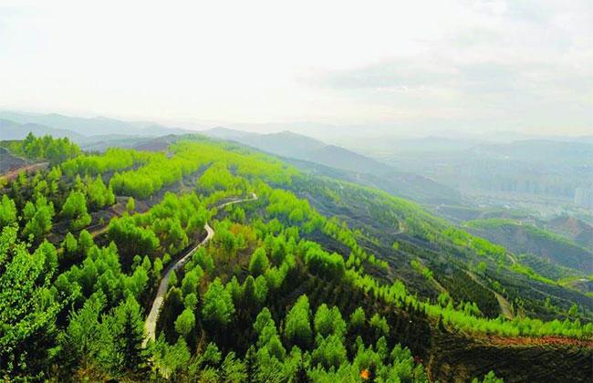 内蒙古5年治理沙化土地超6000万亩