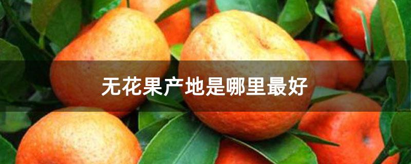 橘子产地主要在哪个省