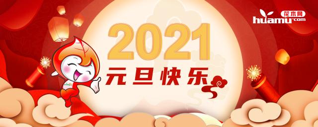 花木网2021年元旦放假公告!