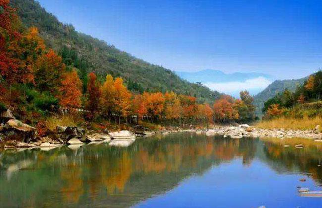 浙江出台全国首个省级森林古道保护利用规划