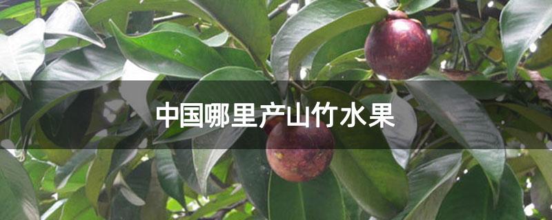 中国哪里产山竹水果