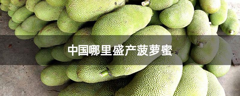 中国哪里盛产菠萝蜜