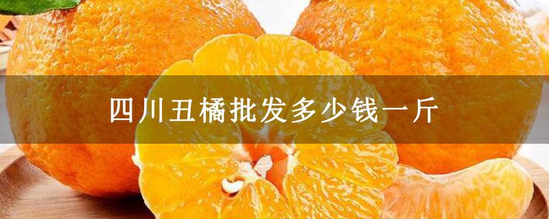 四川丑橘批发多少钱一斤