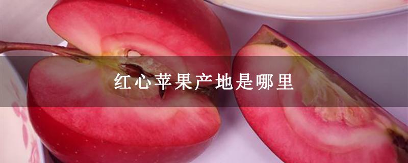 红心苹果产地是哪里