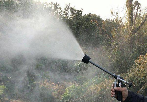 7月园林虫害防治方法