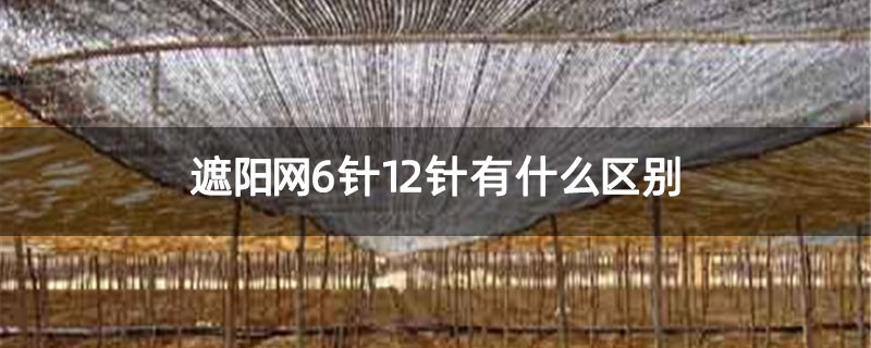 遮阳网6针12针有什么区别