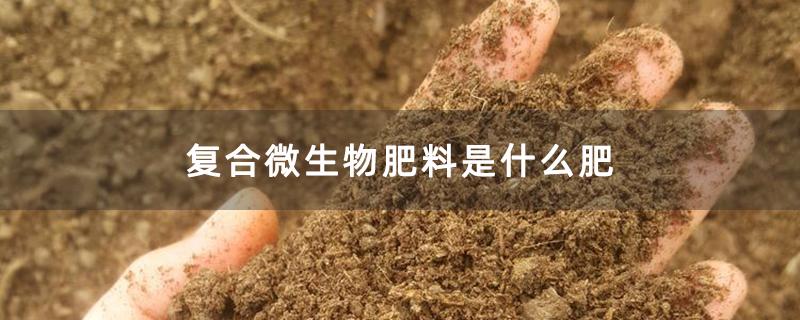 复合微生物肥料是什么肥