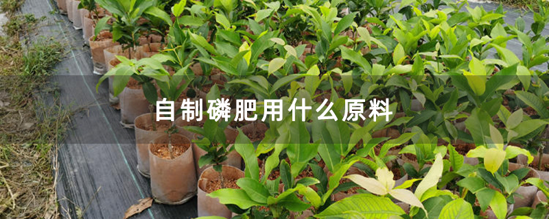 自制磷肥用什么原料