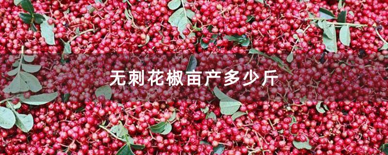 无刺花椒亩产多少斤