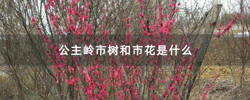 公主岭市树和市花是什么