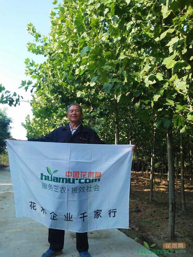 用产品和服务赢市场——茌平县欣欣园林