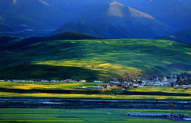 青海省:绿化造林进度同比提高34.2% 规模空前