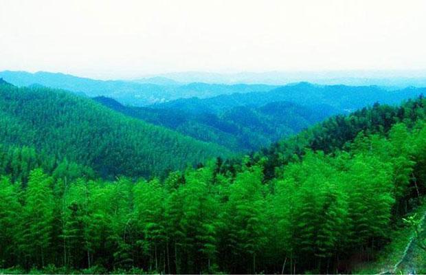 河南日前通过《森林河南生态建设规划(2018-2027年)》