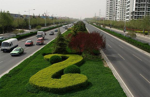 郑州:今年园林绿化着重提质