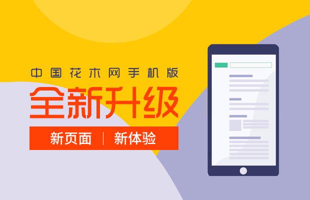 中国花木网全新改版升级,震撼来袭!