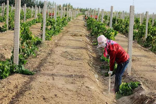 取消农业户口后,农民的这两个证价值更大了!