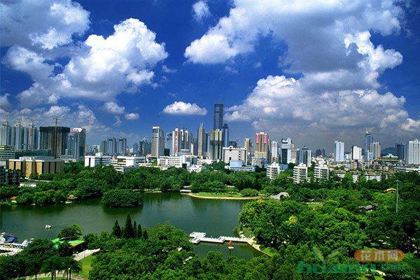 """深圳:中国最""""拥挤""""城市 走出特色创森路"""
