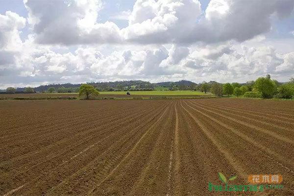 农业耕地占用税你读懂了吗?