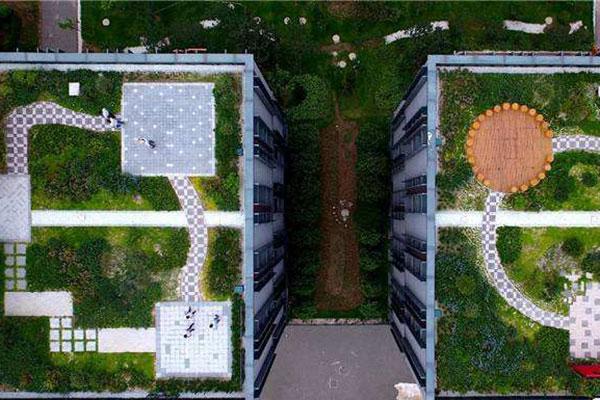 屋顶绿化网络图.jpg
