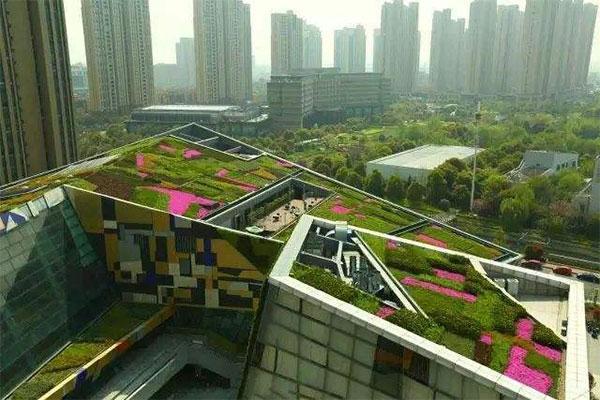 屋顶绿化网络图2.jpg