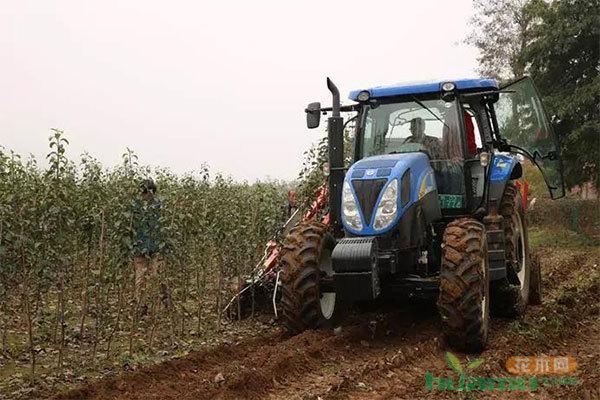 建设机械化苗圃我们还需要什么?