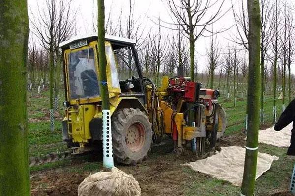 我国苗圃机械化的发展之路.jpg