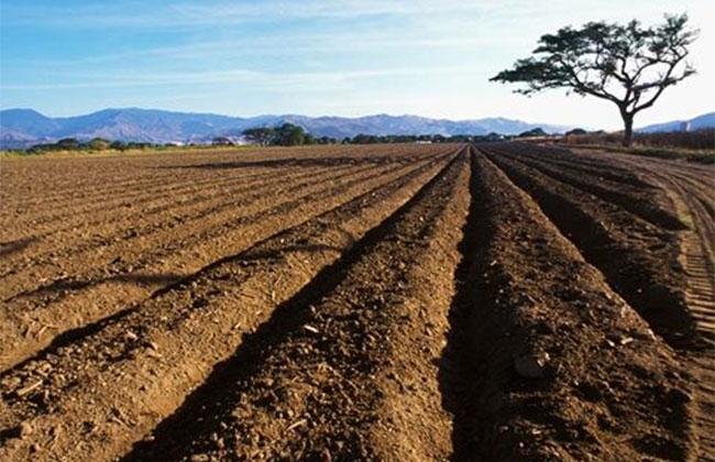农村土地承包法拟修法进一步加强权益保护
