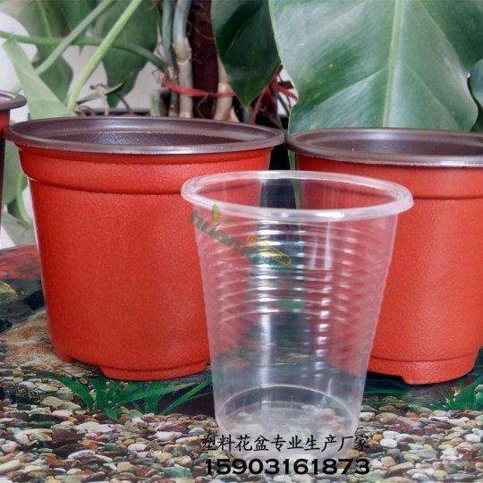 厂家生产双色花盆育苗盆厚实 耐用