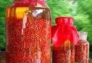 供应红豆杉种子