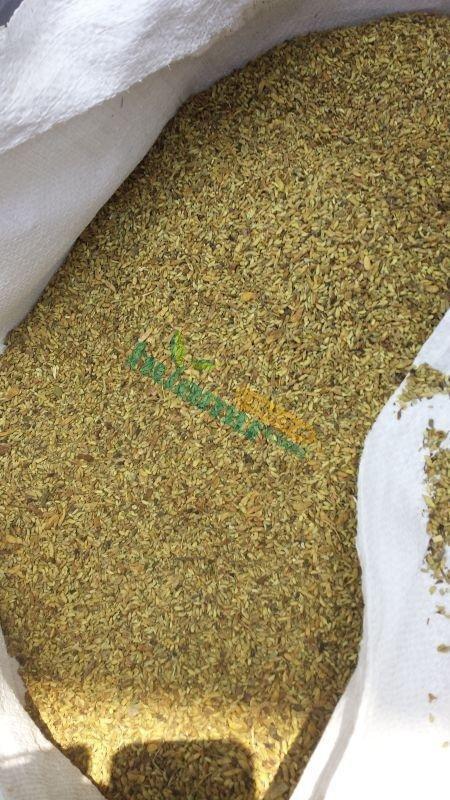 槐米渣(植物蛋白纖維)