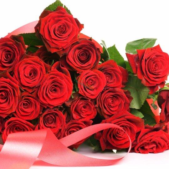 玫瑰鮮花18朵