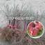 嫁接桃树苗基地-哪里有卖1-5公分桃树苗的