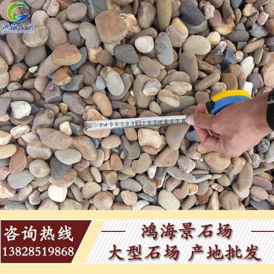 廣東天然鵝卵石 雨花石 鋪路小石子